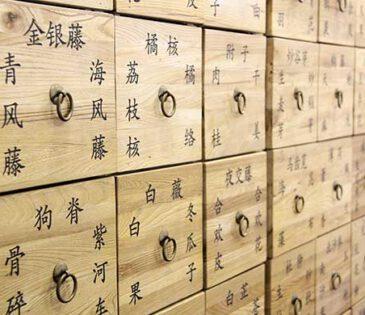 מחקר: יעילות הטיפול ברפואה סינית באטופיק דרמטיטיס
